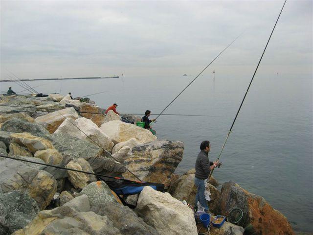 gara-pesca